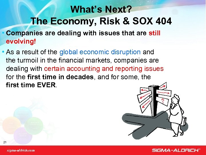 What's Next? The Economy, Risk & SOX 404 • Companies are dealing with issues