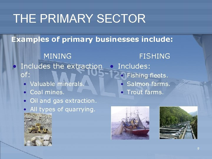 THE PRIMARY SECTOR Examples of primary businesses include: MINING • Includes the extraction of: