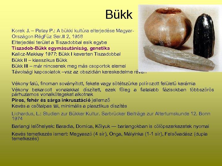 Bükk Korek J. – Patay P. : A bükki kultúra elterjedése Magyar. Országon Rég.