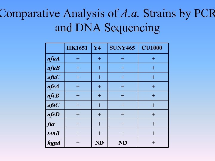 Comparative Analysis of A. a. Strains by PCR and DNA Sequencing HK 1651 Y