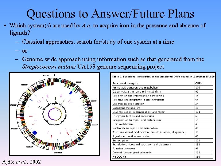 Questions to Answer/Future Plans • Which system(s) are used by A. a. to acquire