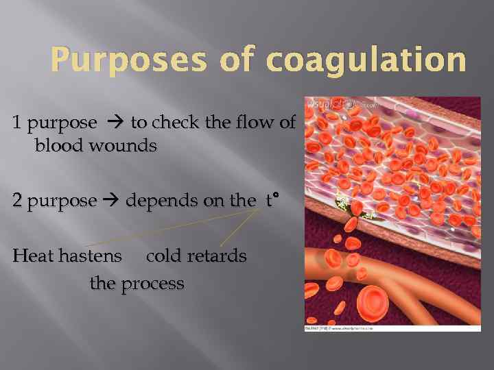 Purposes of coagulation 1 purpose to check the flow of blood wounds 2 purpose
