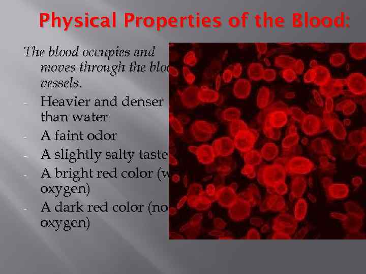 Physical Properties of the Blood: The blood occupies and moves through the blood vessels.