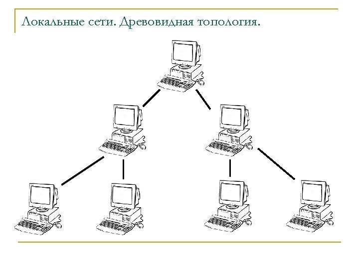 Локальные сети. Древовидная топология.