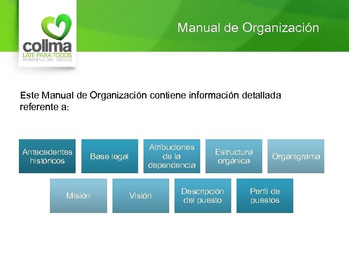 Manual de Organización Este Manual de Organización contiene información detallada referente a: Antecedentes históricos