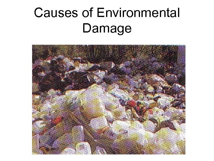 Causes of Environmental Damage