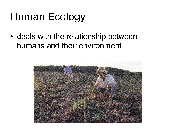 Human Ecology: • deals with the relationship between humans and their environment