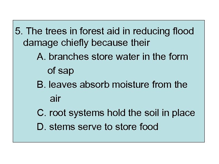 5. The trees in forest aid in reducing flood damage chiefly because their A.