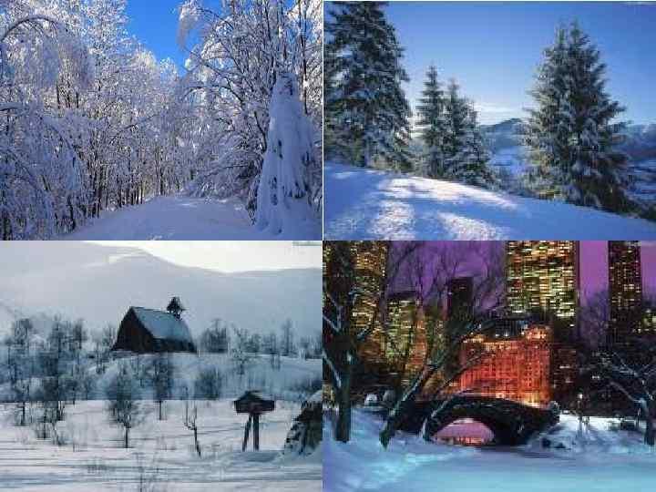 Снег кружится, Снег ложится Снег! Рады снегу зверь и птица И, конечно, человек!