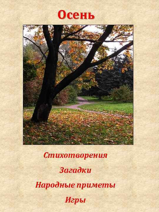 Осень Стихотворения Загадки Народные приметы Игры