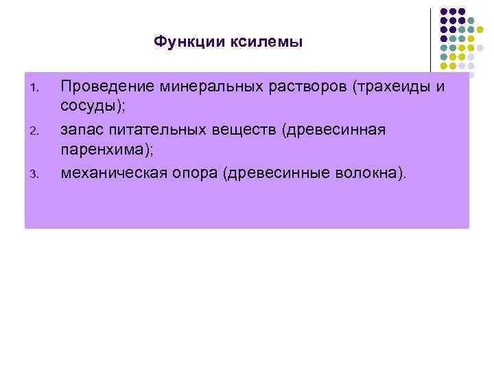 Функции ксилемы 1. 2. 3. Проведение минеральных растворов (трахеиды и сосуды); запас питательных веществ