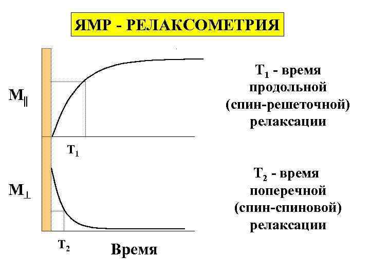 ЯМР - РЕЛАКСОМЕТРИЯ Т 1 - время продольной (спин-решеточной) релаксации M T 1 Т