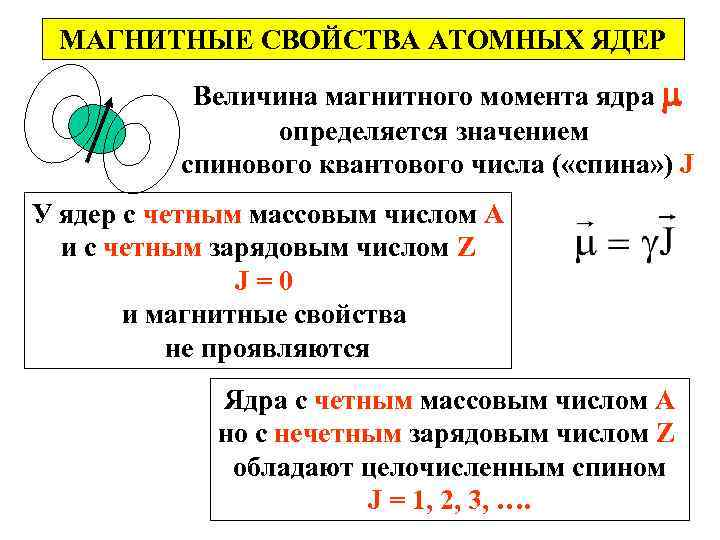 МАГНИТНЫЕ СВОЙСТВА АТОМНЫХ ЯДЕР Величина магнитного момента ядра определяется значением спинового квантового числа (