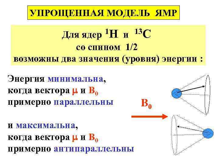 УПРОЩЕННАЯ МОДЕЛЬ ЯМР Для ядер 1 Н и 13 С со спином 1/2 возможны