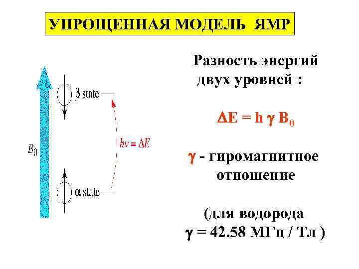 УПРОЩЕННАЯ МОДЕЛЬ ЯМР Разность энергий двух уровней : E = h B 0 -