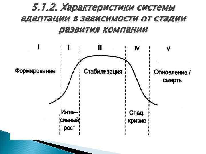 5. 1. 2. Характеристики системы адаптации в зависимости от стадии развития компании