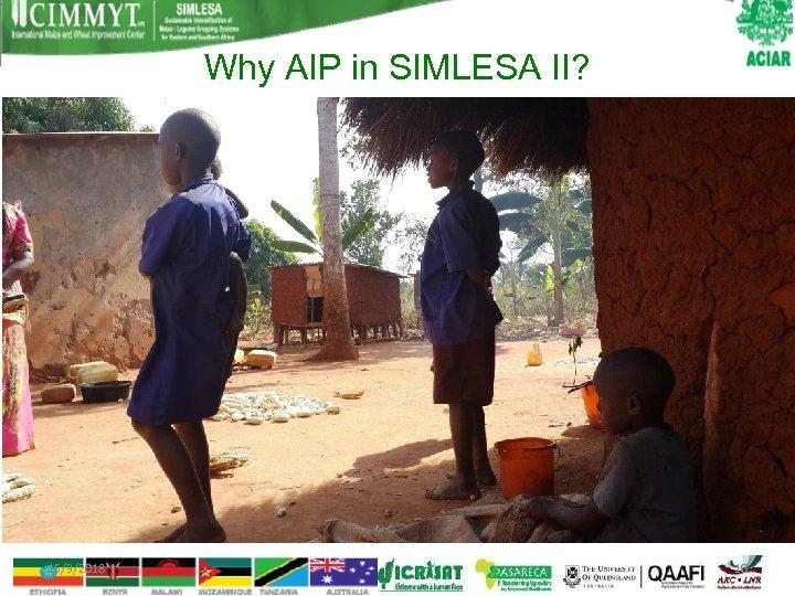 Why AIP in SIMLESA II? 15/3/2018 10
