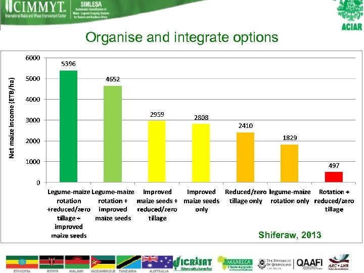 Organise and integrate options Shiferaw, 2013
