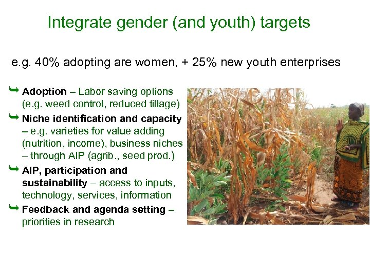 Integrate gender (and youth) targets e. g. 40% adopting are women, + 25% new