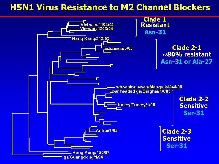 H 5 N 1 Virus Resistance to M 2 Channel Blockers Clade 1 Resistant