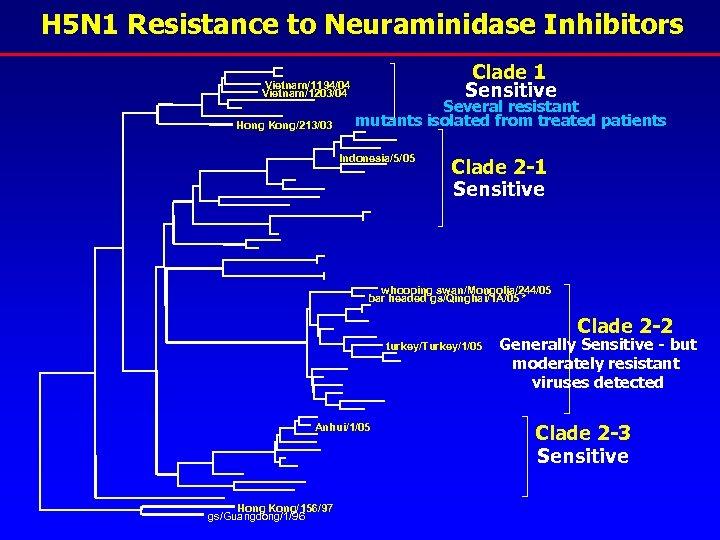 H 5 N 1 Resistance to Neuraminidase Inhibitors Vietnam/1194/04 Vietnam/1203/04 Hong Kong/213/03 Clade 1