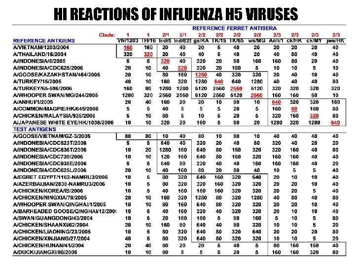HI REACTIONS OF INFLUENZA H 5 VIRUSES