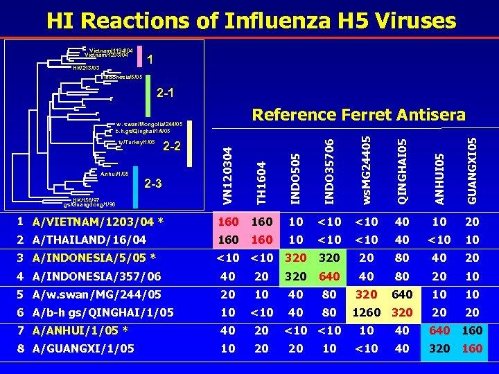 HI Reactions of Influenza H 5 Viruses Vietnam/1194/04 Vietnam/1203/04 1 HK/213/03 Indonesia/5/05 2 -1