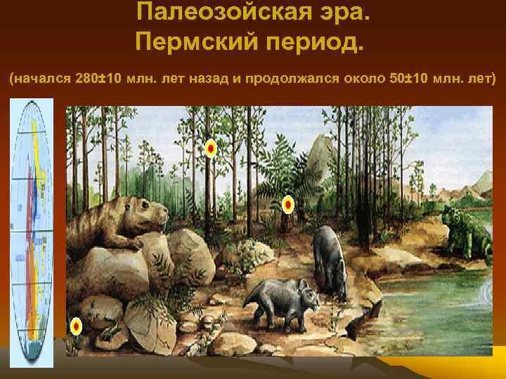 Палеозойская эра. Пермский период. (начался 280± 10 млн. лет назад и продолжался около 50±