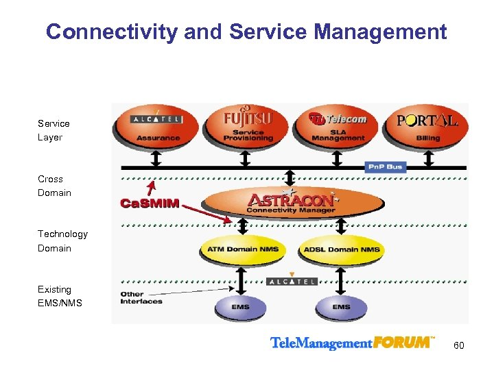 Connectivity and Service Management Service Layer Cross Domain Technology Domain Existing EMS/NMS 60