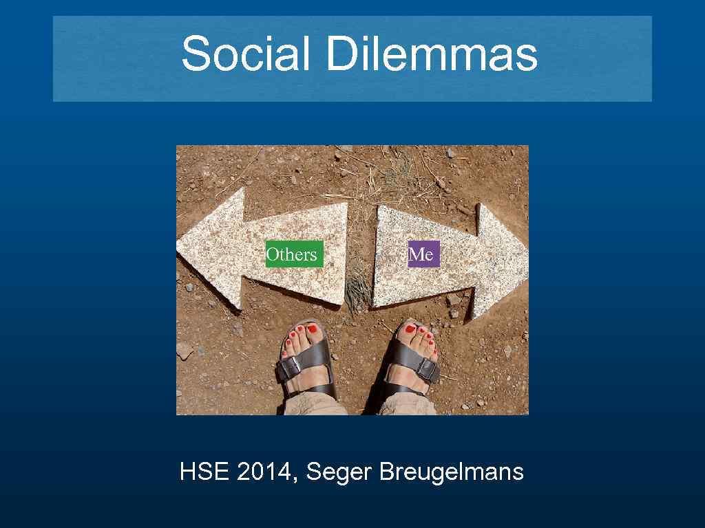 Social Dilemmas Others Me HSE 2014, Seger Breugelmans
