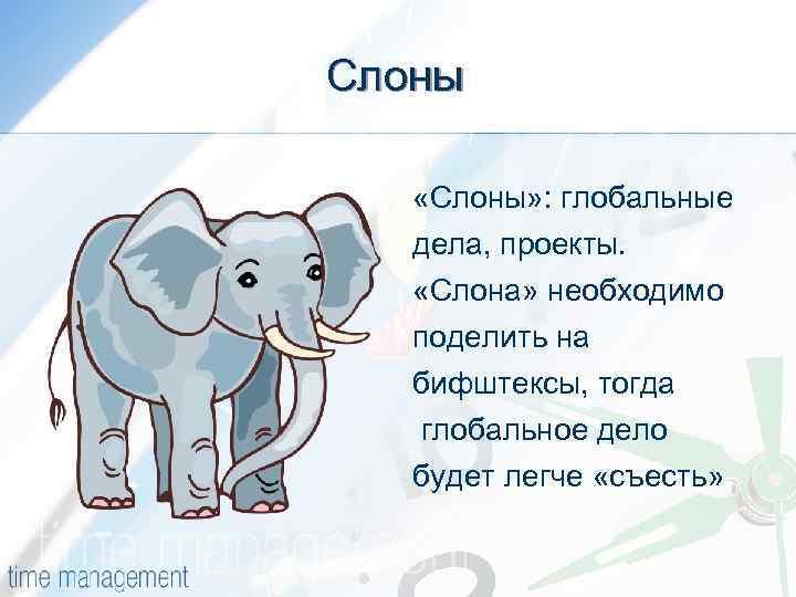 Слоны «Слоны» : глобальные дела, проекты. «Слона» необходимо поделить на бифштексы, тогда глобальное дело