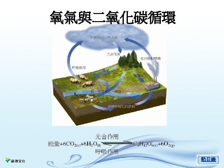 氧氣與二氧化碳循環 節目錄