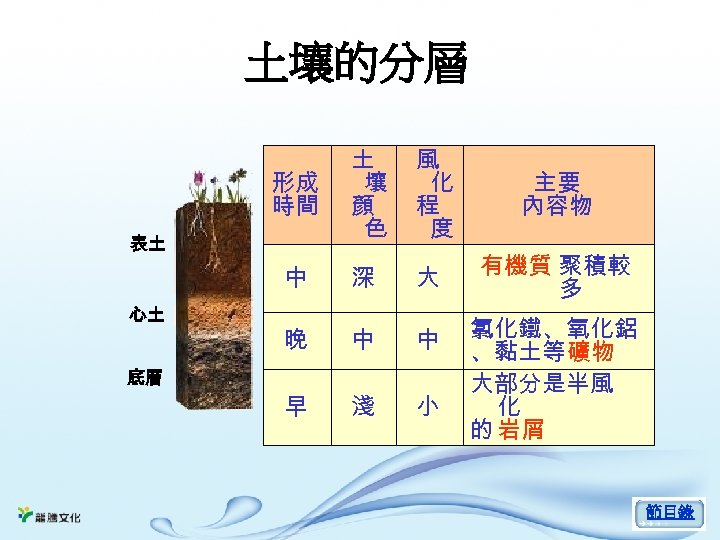 土壤的分層 形成 時間 土 壤 顏 色 風 化 程 度 主要 內容物 中