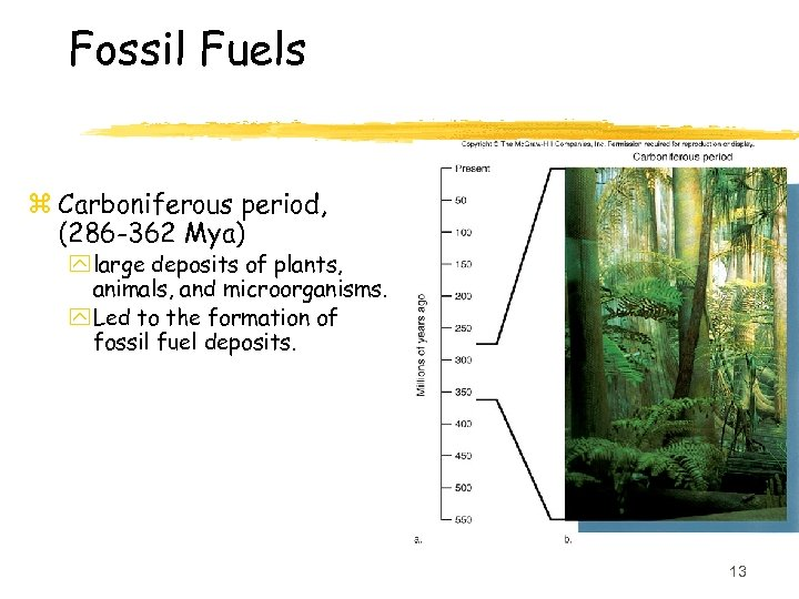 Fossil Fuels z Carboniferous period, (286 -362 Mya) y large deposits of plants, animals,
