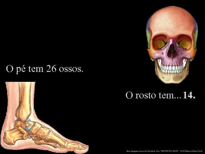 O pé tem 26 ossos. O rosto tem. . . 14. Parte integrante da
