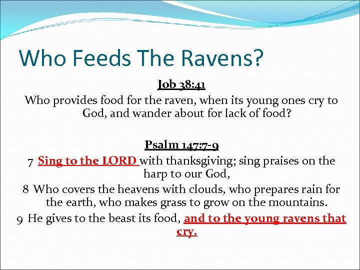 Who Feeds The Ravens? Job 38: 41 Who provides food for the raven, when
