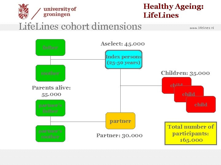 Healthy Ageing: Life. Lines cohort dimensions father www. lifelines. nl Aselect: 45. 000 Index
