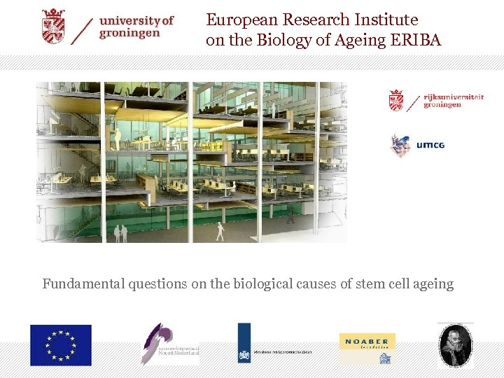 European Research Institute on the Biology of Ageing ERIBA Fundamental questions on the biological