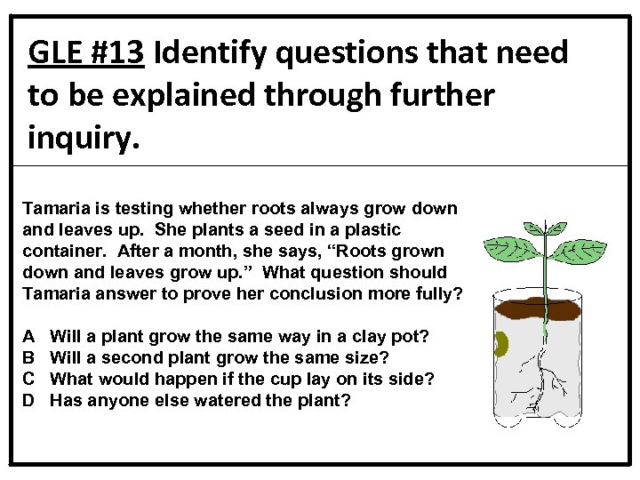 GLE #13 Identify questions that need to be explained through further inquiry. Tamaria is