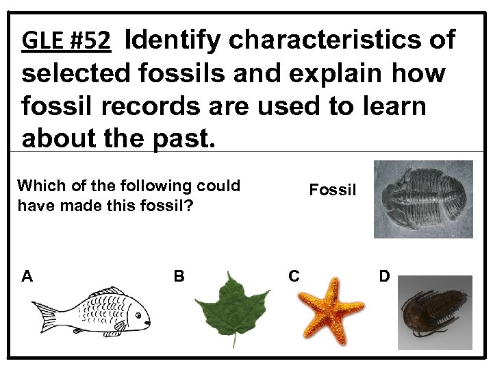 GLE #52 Identify characteristics of selected fossils and explain how fossil records are used