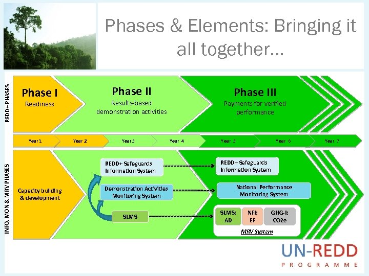 REDD+ PHASES Phases & Elements: Bringing it all together. . . Year 2 Year