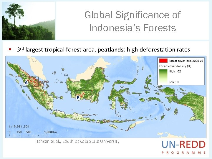 Global Significance of Indonesia's Forests • 3 rd largest tropical forest area, peatlands; high