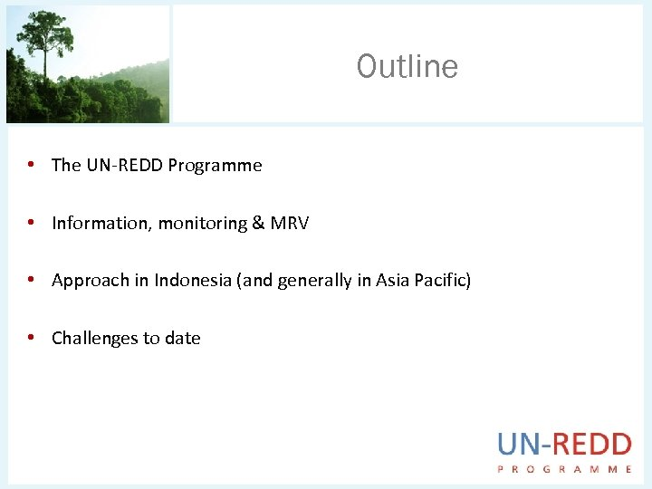 Outline • The UN-REDD Programme • Information, monitoring & MRV • Approach in Indonesia