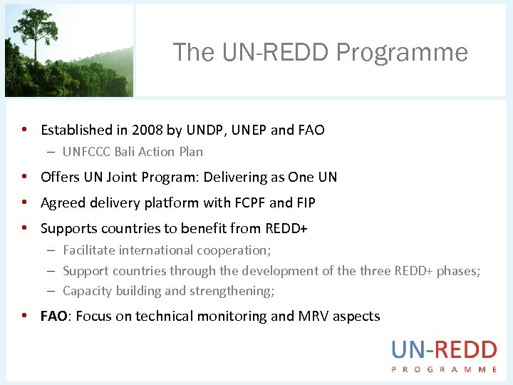 The UN-REDD Programme • Established in 2008 by UNDP, UNEP and FAO – UNFCCC