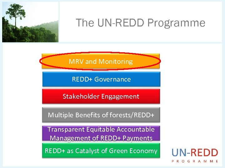 The UN-REDD Programme MRV and Monitoring REDD+ Governance Stakeholder Engagement Multiple Benefits of forests/REDD+