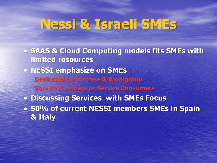 Nessi & Israeli SMEs SAAS & Cloud Computing models fits SMEs with limited rosources