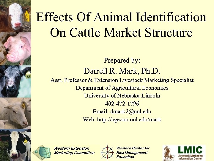 Effects Of Animal Identification On Cattle Market Structure Prepared by: Darrell R. Mark, Ph.