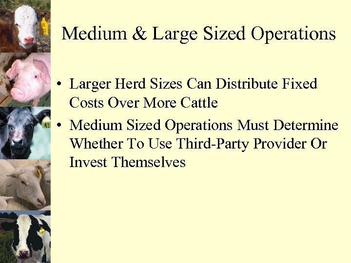 Medium & Large Sized Operations • Larger Herd Sizes Can Distribute Fixed Costs Over