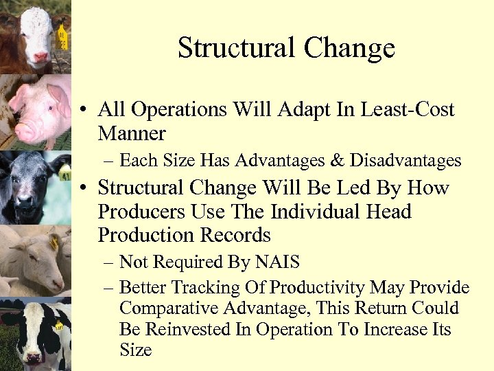 Structural Change • All Operations Will Adapt In Least-Cost Manner – Each Size Has