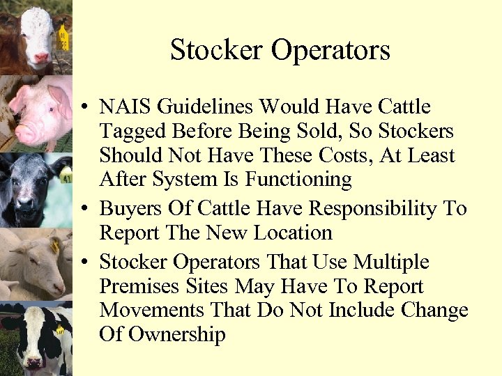 Stocker Operators • NAIS Guidelines Would Have Cattle Tagged Before Being Sold, So Stockers